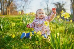 One year old girl sitting on the grass with yellow narcissi. Toddler looking at flowers on a spring day in park. Adorable little kid exploring nature stock photography