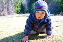 One Year Old Playing and Hiking Stock Image