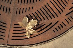 One yellow autumn leaf fallen onto rusty metal street grate abstract pattern background. Close up detail of one yellow autumn leaf fallen onto rusty metal street stock photo