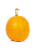 One yellow pumpkin in closeup Stock Photo