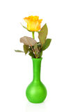 One yellow rose in green vase Royalty Free Stock Photos