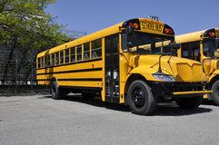 One yellow school bus. Parked by a macadam parking lot Stock Photo