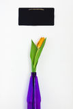 One yellow tulip in a vase and violet purple chalk board for not Royalty Free Stock Images