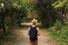 One young man back, rear view, outdoor walking thought forest, a Royalty Free Stock Photos
