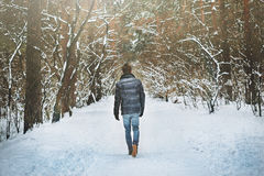 One young man in winter forest Royalty Free Stock Photo