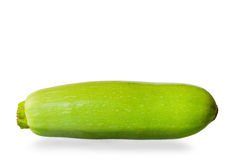 One young zucchini Royalty Free Stock Image