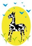 One zebra on isolated background. Royalty Free Stock Photos