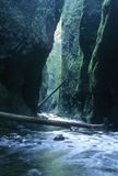 Oneata Gorge, Oregon Stock Photos