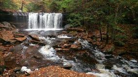 Oneida Falls Loop – Ricketts Glen Pennsylvania stock video