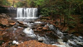 "Oneida Falls Loop †""Ricketts Glen Pennsylvania stock video"