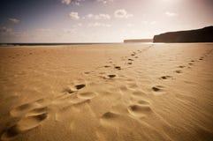 Oneindig strand in Portugal royalty-vrije stock afbeeldingen