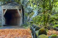Oneonta隧道哥伦比亚河峡谷 图库摄影