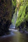 Oneonta cade nella gola del fiume Columbia, Oregon Fotografia Stock Libera da Diritti