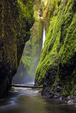 Oneonta falls in Columbia river gorge, Oregon Stock Photo