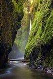 Oneonta falls in Columbia river gorge, Oregon Stock Photo