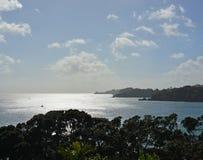 Oneroa海湾,怀希基岛,奥克兰垂直的全景  图库摄影