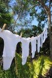onesies clothesline Стоковые Фото