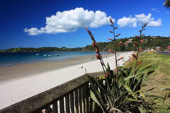 Onetangi Bay, Waiheke Island Royalty Free Stock Photo