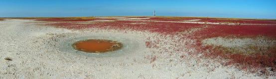 Ongebruikelijk landschap van het eiland van woestijnTendra, de Oekraïne Stock Foto's
