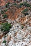 Ongebruikelijke achtergrond, rots met de groei Close-up van bergrotsen Royalty-vrije Stock Afbeeldingen