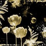 Ongebruikelijke grungeachtergrond met bloemen Royalty-vrije Stock Afbeelding