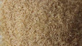 Ongekookte duidelijke rijstkorrels stock video