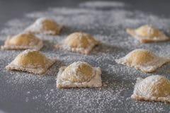 Ongekookte eigengemaakte ravioli Stock Fotografie