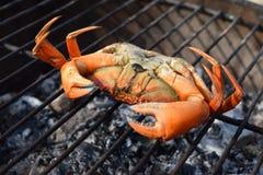 Ongekookte krab die op een openluchtstrandbarbecue leggen Stock Foto