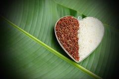 Ongekookte organische rijst en rode rijst in een plastic kom Royalty-vrije Stock Afbeelding