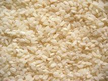 Ongekookte rijst Royalty-vrije Stock Fotografie