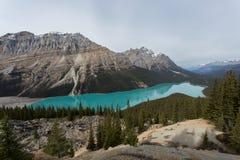 Ongelooflijke Aqua Lake Nestled door Bergen Stock Afbeeldingen
