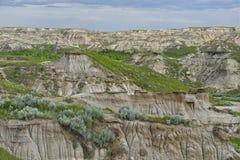 Ongeluksboden in Dinosaurus Provinciaal Park stock foto
