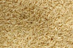 Ongepelde rijst Royalty-vrije Stock Fotografie