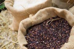 Ongepelde rijst in de zak Royalty-vrije Stock Fotografie