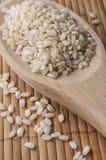 Ongepelde rijst Het heeft een mild nootachtig aroma, is taaier en voedzamer dan witte rijst Stock Foto's