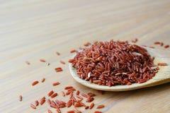 Ongepelde rijst op houten gietlepel Royalty-vrije Stock Afbeeldingen