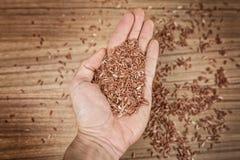 Ongepelde rijst ter beschikking op houten achtergrond Royalty-vrije Stock Foto's