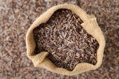 Ongepelde rijst in zakzak Royalty-vrije Stock Foto's