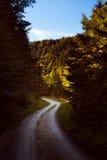 Ongeplaveid landweg in de herfst seizoen Stock Afbeelding