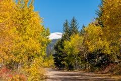 Ongeplaveide weg bij de herfst zonnige dag Royalty-vrije Stock Foto