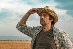 Ongerust gemaakte landbouwer op gerstgebied op een winderige dag royalty-vrije stock fotografie