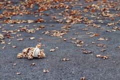 Ongeval met een kind op de weg stock fotografie