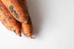 Ongewassen wortel op witte lijst royalty-vrije stock foto