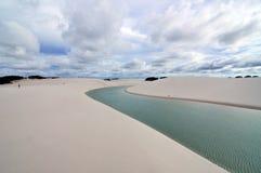 Ongewone Woestijn stock foto's