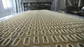 Ongezuurde broodjes op de transportband stock video