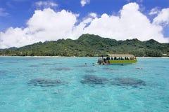 Onherkenbare toerist die in Rarotonga-lagune Cook Islands snorkelen royalty-vrije stock afbeeldingen