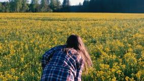 Onherkenbare vrouwen donkerbruine gangen op het gebied van gele bloemen Achter mening stock video