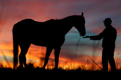 Żołnierz i koń Obraz Royalty Free