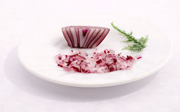 Onion. The onion on a white background Stock Photography