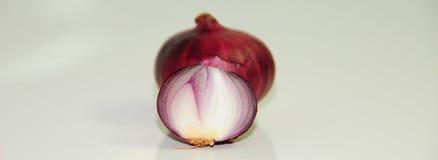 Onion Royalty Free Stock Image
